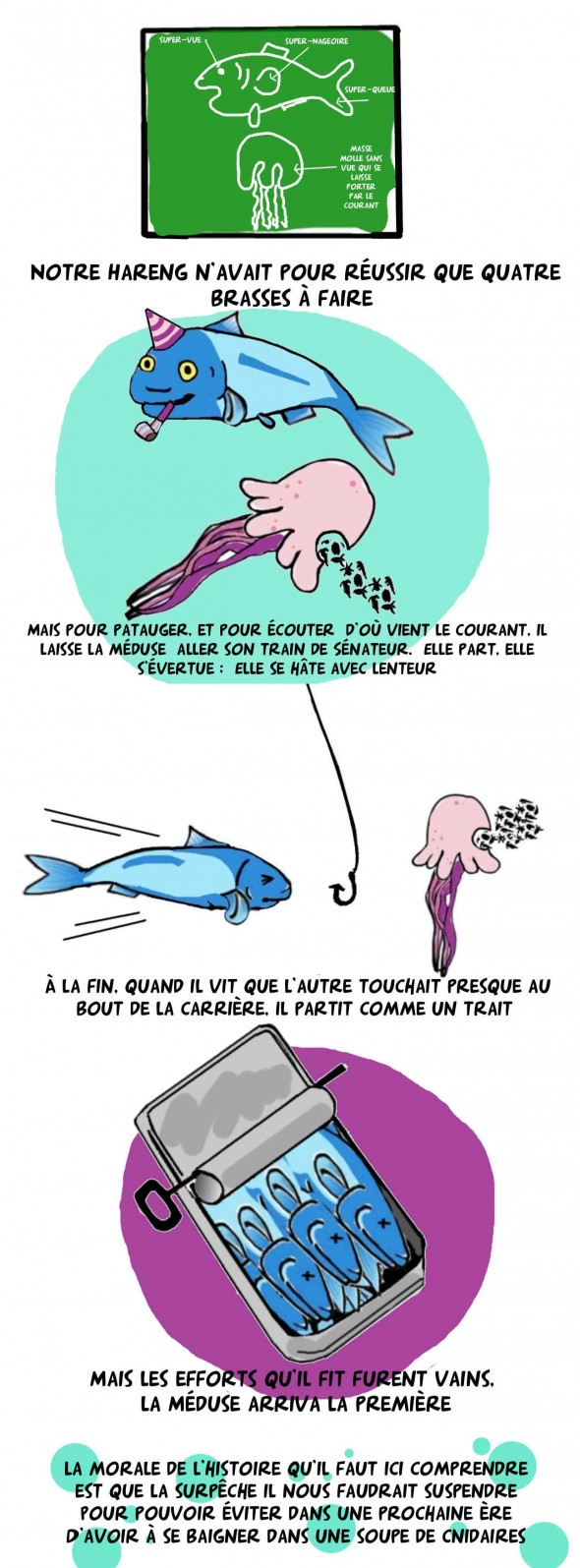 Le hareng et la méduse 2