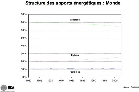 Pierre Combris: la structure des apports énergétiques (Monde)