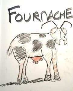 Illustration de Nico pendant la diffusion en Live: les fourmis élèvent leurs vaches!