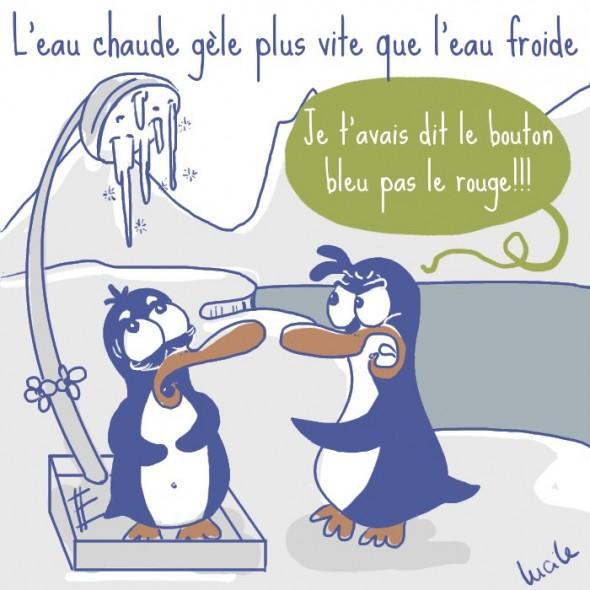 L'effet Mbemba chez les pingouins