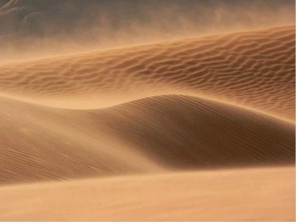 sable.33.39