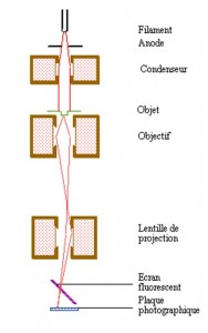 Figure 11 - Principe du microscope électronique