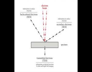 Figure 12 - Principe du MET et du MEB