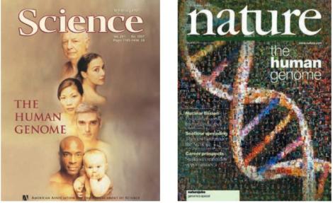 Les parutions des résultats préliminaires du séquençage du génome humain par Celera et le consortium public