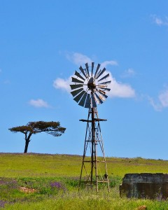 86-windmill-water-pump-werner-lehmann